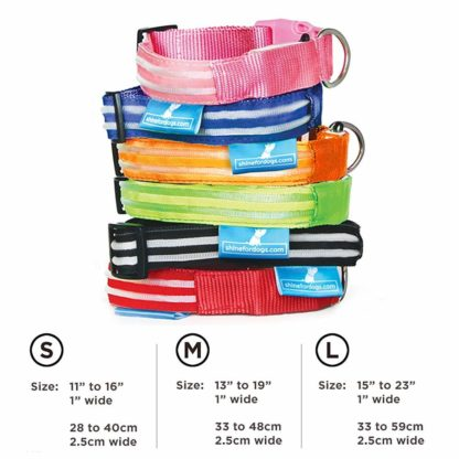 light up collar sizing guide