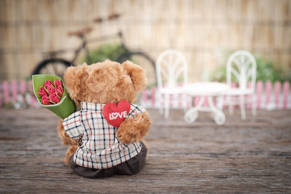 teddy bear memorable date night